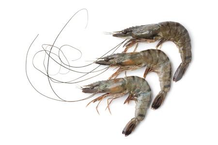 Whole fresh black tiger shrimps on white background