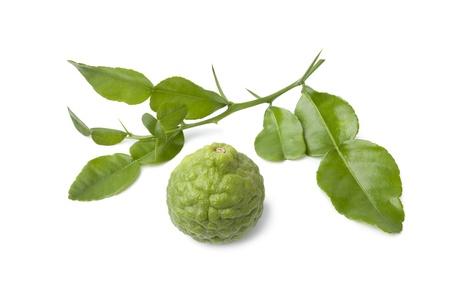 kafir lime: Kaffir lime and a twig of leaves on white background Stock Photo
