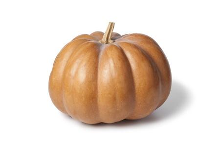 muscat: Whole single Muscat de Provence pumpkin on white background
