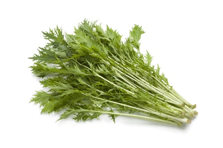 brassica:  Bunch of fresh Mizuna leaves on white background