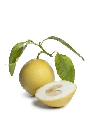 etrog: Whole and half Citrus Medica fruit on white background Stock Photo