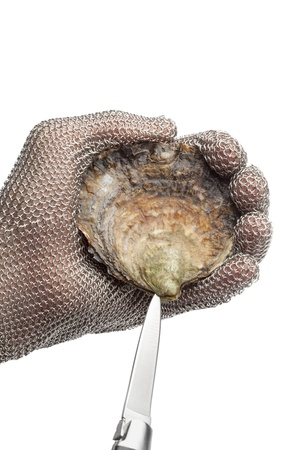 Opening a flat oyster with a knife and protection glove on white background Banque d'images