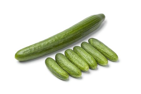 compared:  Fresh mini cucumbers compared with a large one on white background