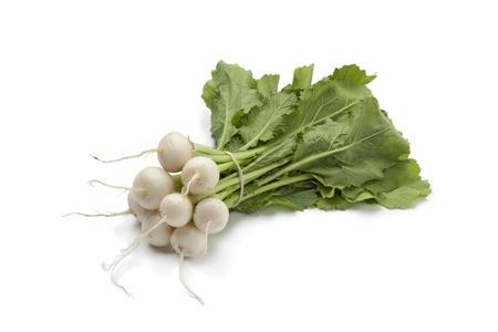Mini white turnips on white background