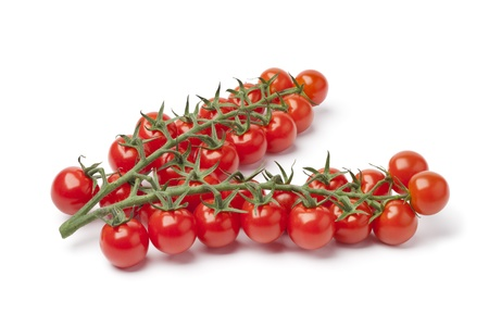 Small cherry tomatoes on a vine on white background photo