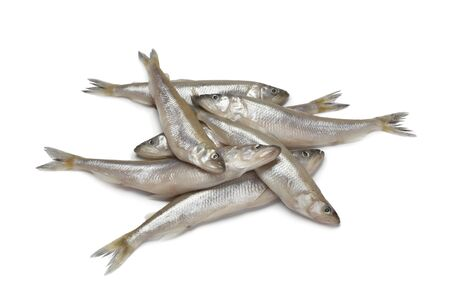 smelt:  Fresh European smelt fishes on white background