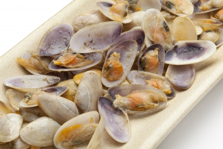 vittatus:  Cooked banded wedge shells on a dish on white background