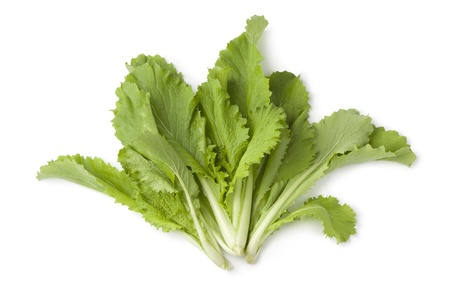 Young Chinese cabbage leaves on white background Stock Photo - 14040923