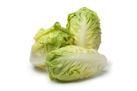 Baby gem lettuce on white background
