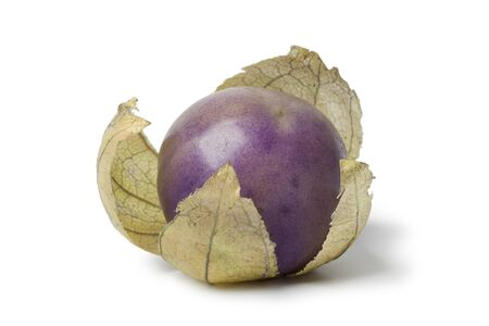 Fresh purple tomatillo in a husk on white background Stock Photo