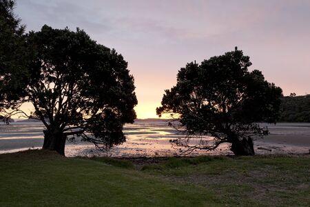 new zealand beach:  Sunset on Shelly beach at the Coromandel New Zealand Stock Photo