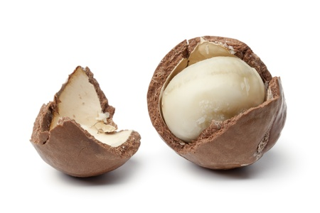 macadamia nut: Macadamia nut in a broken shell on white background
