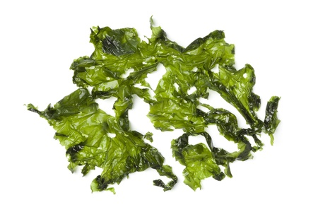 Salted sea lettuce on white background