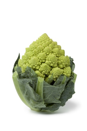 romanesco: Mini Romanesco cabbage on white background