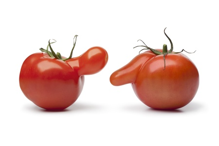 deformation: Talking nosy tomatoes on white background Stock Photo