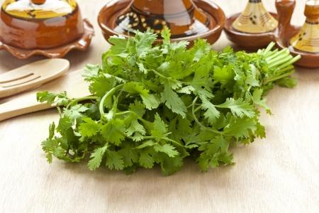 cilantro: Manojo fresco de cilantro en la mesa Foto de archivo