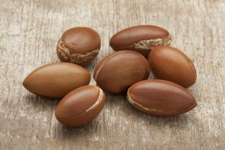 Moroccan Argan nuts Banque d'images