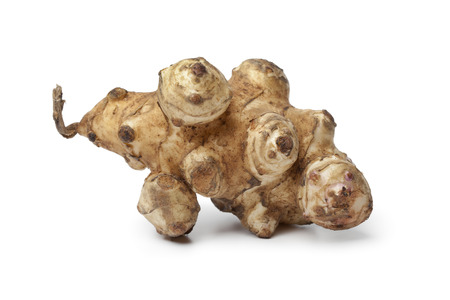 jerusalem artichoke: Single fresh Jerusalem artichoke on white background