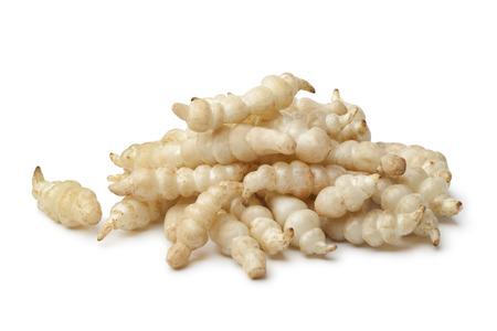 Fresh Japanese crosne on white background Фото со стока - 25115489