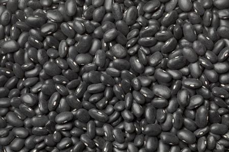turtle bean: Black turtle beans full frame