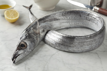 Beltfish on the table