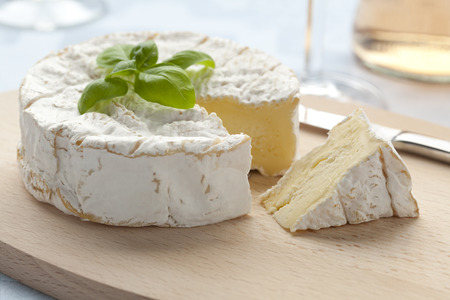 moulded: Fresh Camembert cheese and a slice