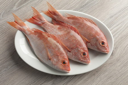 Fresh red snappers on a dish Stock Photo