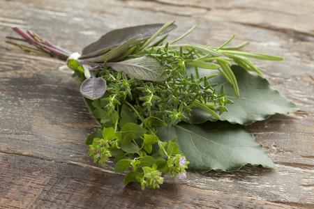 Fresh bouquet garni with different herbs Stockfoto
