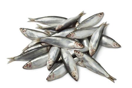 sprat: Fresh raw European sprats on white background
