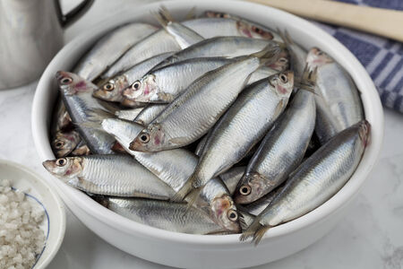 sprat: Fresh raw European sprat on a dish Stock Photo