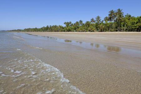 mision: Playa con palmeras en Mission Beach, Queensland, Australia