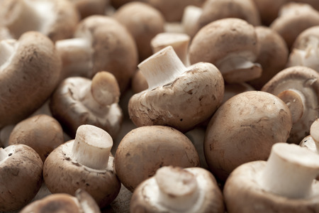Fresh chestnut mushrooms full frame 写真素材