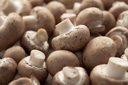 Fresh chestnut mushrooms full frame Stockfoto