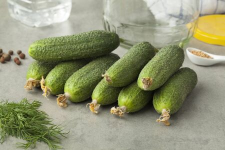 gherkins: Fresh gherkins and herbs ready to pickle Stock Photo