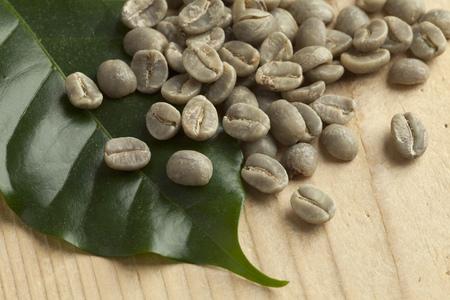 frijoles: Montón de Pamwamba verdes granos de café sin tostar y una hoja de la planta de café Foto de archivo