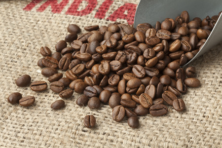 Roasted  Malabar coffee beans from India on a jute bag Фото со стока