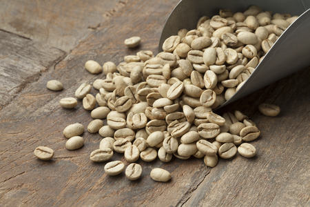 unroasted: Heap of Indian Malabar green unroasted coffee beans