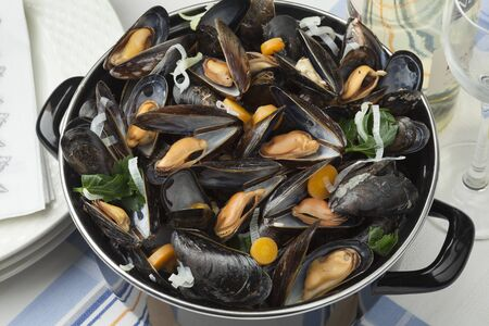 edible: Pan with fresh cooked mussels ready to eat Stock Photo
