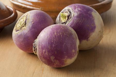 round: Fresh raw white turnips