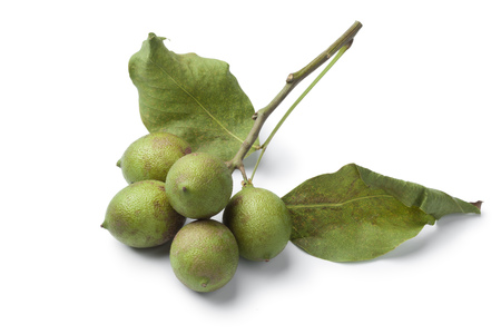 Fresh quenepa fruit with leaves on white background