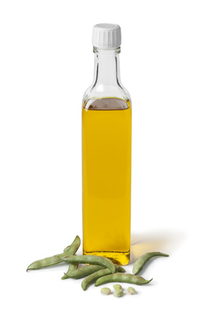 soybean: Bottle of soybean oil and fresh soy beans on white background