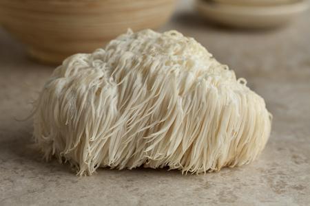 Single Lion's mane mushroom