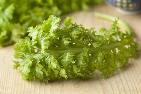 mustard leaf: Fresh green young wasabina leaf or leaf mustard