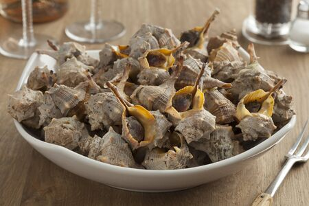 spiny: Dish with cooked Italian spiny dye-murex