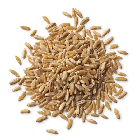 alimentary: Heap of kamut kernels on white background