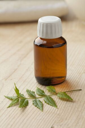 neem: Bottle with Neem oil and green twig