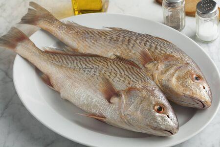 Paire de poisson frais de Koebi cru sur un plat