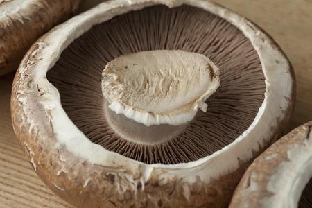 portobello: Fresh raw organic portobello mushrooms
