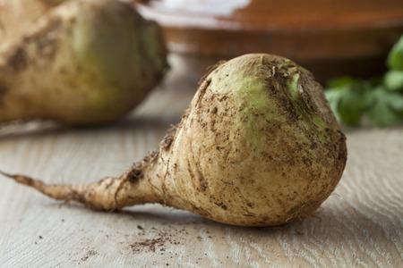 Moroccan fresh raw swede close up Standard-Bild