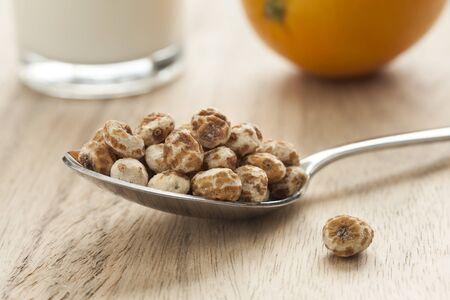 Shelled chufa nuts  on a spoon